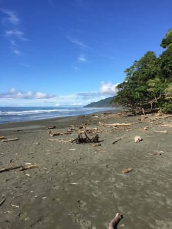 Carate, Costa Rica : photo1.jpg