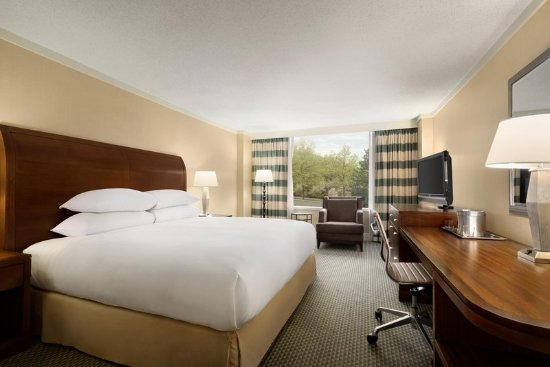Hilton Hotel Stamford Ct Review