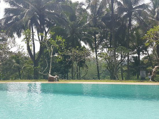 COMO Shambhala Estate: 20171203_025432_large.jpg