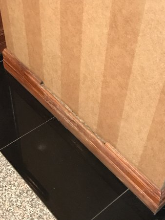 Holiday Inn Southgate - Heritage Center: Broken baseboard throughout our room and hotel.