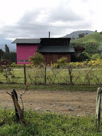Gallito de las rocas guest house bewertungen fotos for Jardin kolumbien