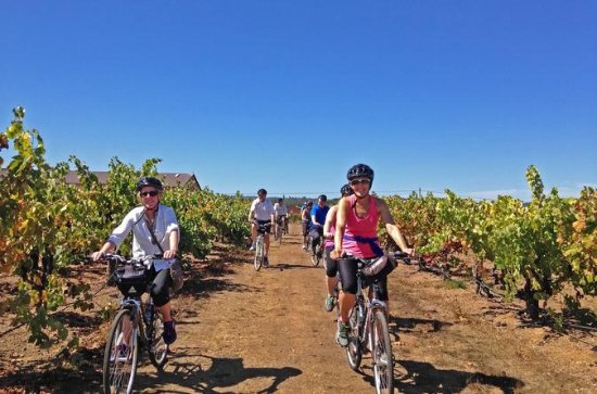 Healdsburg Half-Day Cycling Wine Tour ...