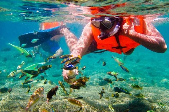 Bali Snorkeling Tour At Blue Lagoon All-inclusive