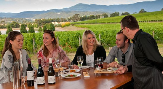Paul's Wine Tours