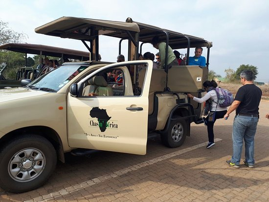 Marloth Park, Sudáfrica: Two different Days with Great experiences. Southern Kruger and good guiding skills makes for hap