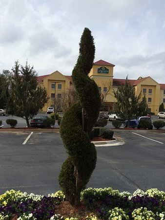 Locust Grove, GA: Cool looking shrubbery in front of hotel.....