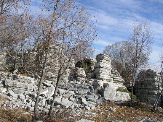 Monodendri, Greece: Πέτρινο Δάσος,Μονοδέντρι