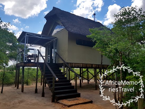 Elephant's Eye, Hwange: All room are raised with views of the waterhole