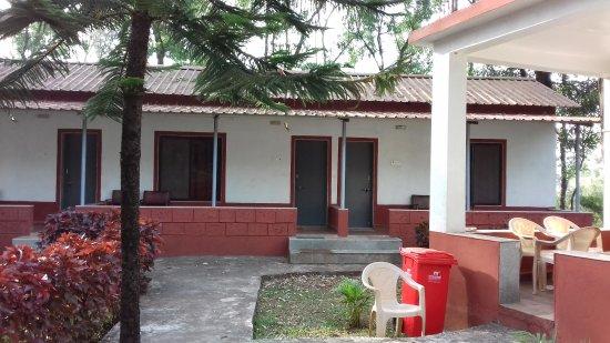 Amba, India: 20171203_084315_large.jpg
