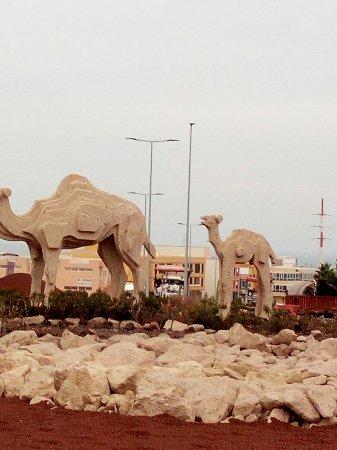 San Miguel de Abona, España: Rotonda de los camellos