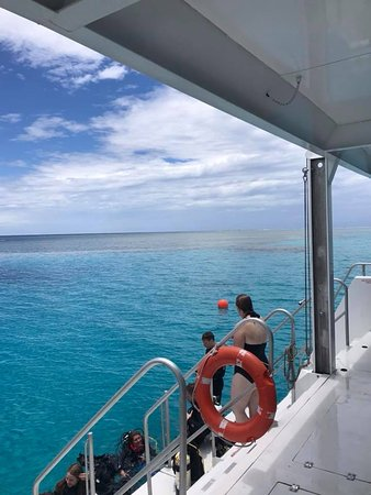 Bundaberg, Australië: Snorkel or scuba your choice. Easy sea access via steps.