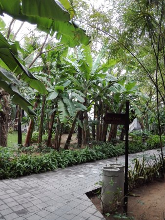 Foto de Hoi An Ancient House Village Resort and Spa