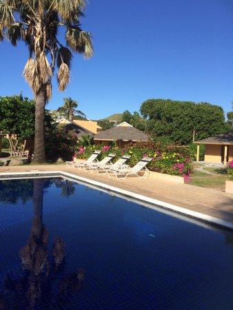 Sugar Bay Club: Spotlessly clean pool and attractive garden area