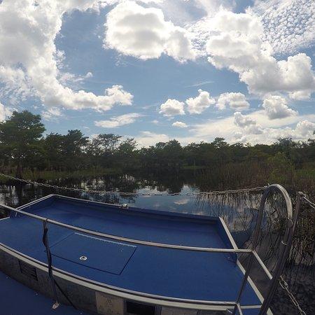 มิดเวย์, ฟลอริด้า: Midway Airboat Rides