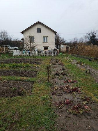 Sofia Region, Bulgaristan: Garden