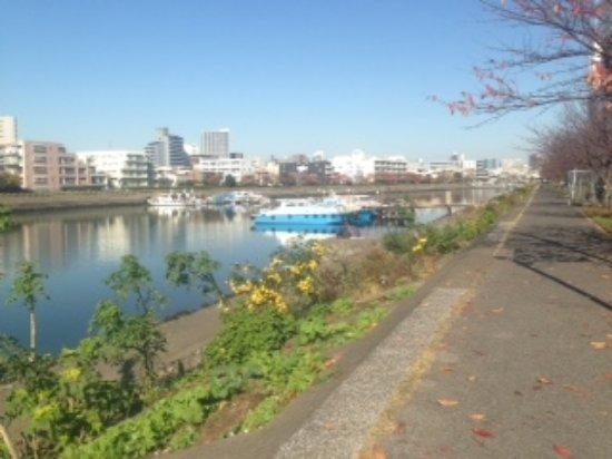 Shinagawa Hanakaido Mizube Hiroba Photo