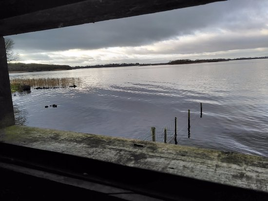 Craigavon, UK: View from Croaghan Hide
