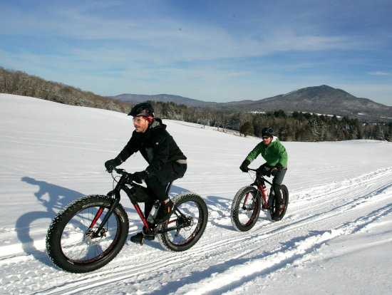 East Burke, VT: Trails in open fields and wooded areas