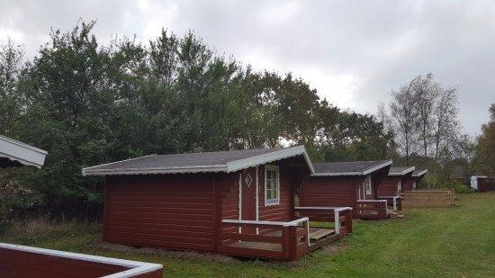 Nakskov, Denmark: De hyggelige hytter med plads til 5 personer og egen terrasse på Albuen Strand Camping