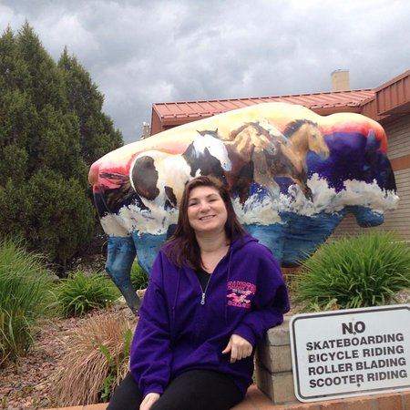 Great Falls, MT: One of the painted Buffalo sculptures around town.