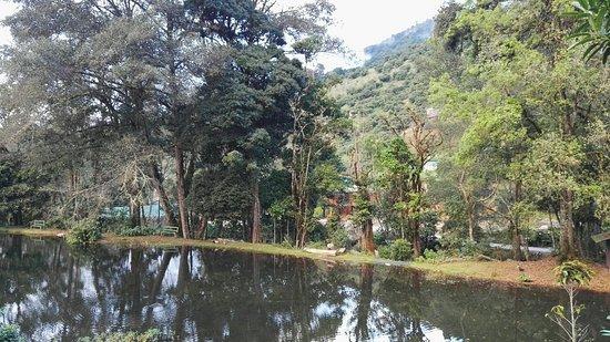 San Gerardo de Dota, Κόστα Ρίκα: IMG_20171202_164603_large.jpg