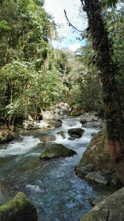 San Gerardo de Dota, Κόστα Ρίκα: IMG_20171203_094437_large.jpg