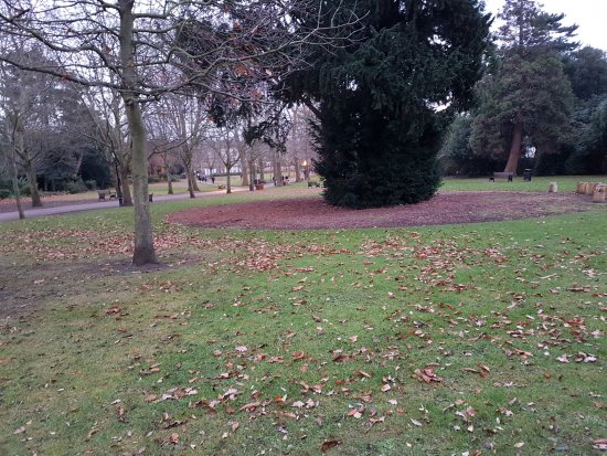The vines park