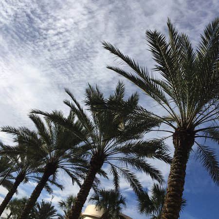 Waldorf Astoria Orlando: photo1.jpg