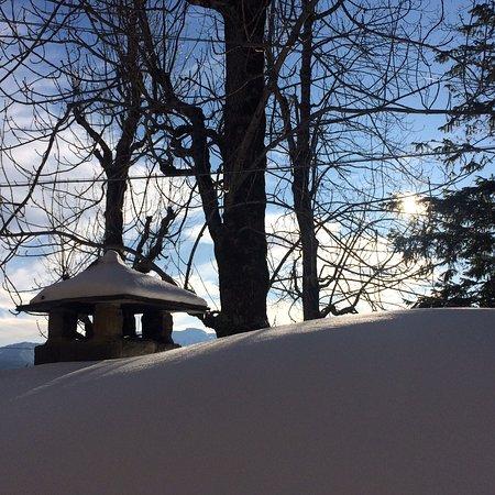 Il Borgo dei Celti Agriturismo: photo1.jpg