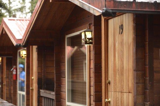 Cabins At Denali Park Village