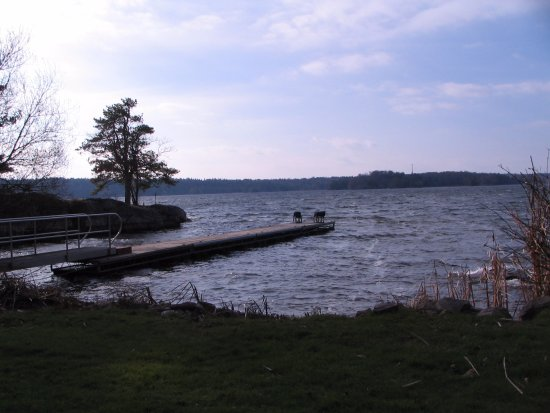 Fineview, NY: beautiful view of Lake of the isles and place to dock your boat