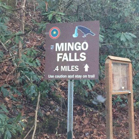 Mingo Falls: photo0.jpg