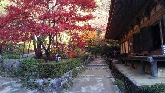 Aisho-cho, Japonya: KIMG1626_large.jpg