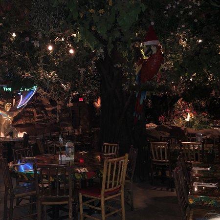 Rainforest Cafe Picture