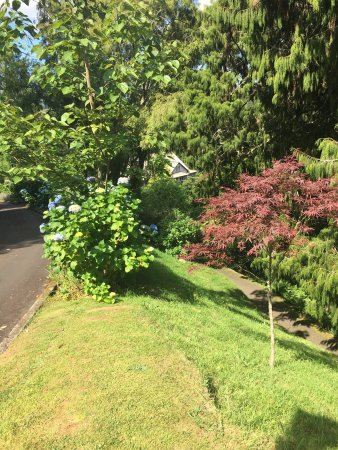 New Plymouth, Nowa Zelandia: Gorgeous garden