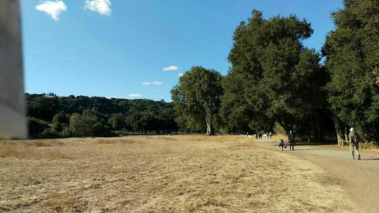 Los Altos Hills, CA: Rancho San Antonio Open Space Preserve
