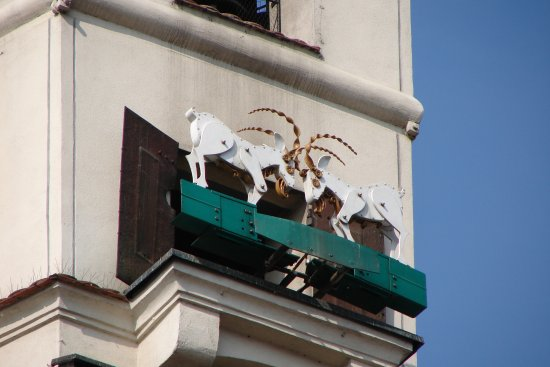 City Guide Poznan Tours: The goats - symbol of Poznan - fighting once a day at noon. Must see it!