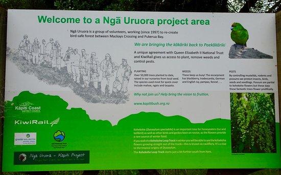 Paekakariki, New Zealand: Trailside Sign with Details of Restoration Efforts
