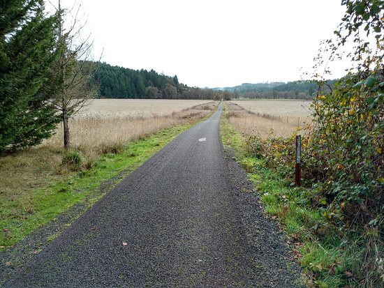 Banks Vernonia State Trail All You Need To Know Before You Go