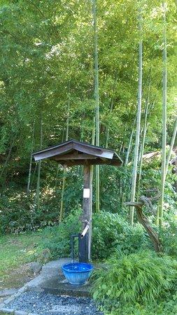Tendo, Japan: IMAG1505_large.jpg