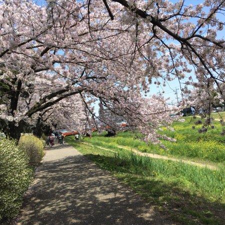 Toyokawa, Japan: photo3.jpg