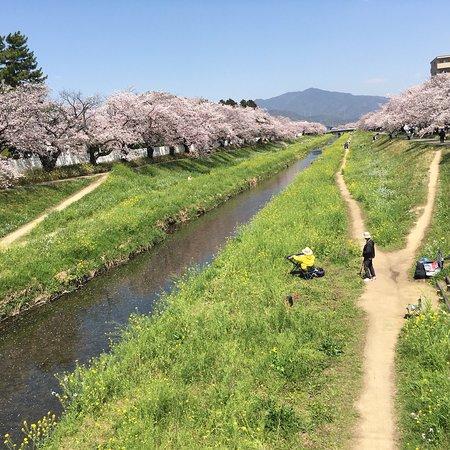 Toyokawa, Japan: photo4.jpg