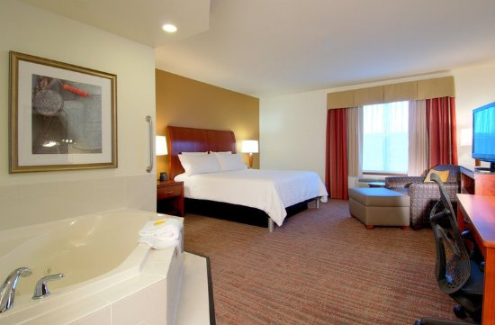 Hilton Garden Inn Rockford: Suite