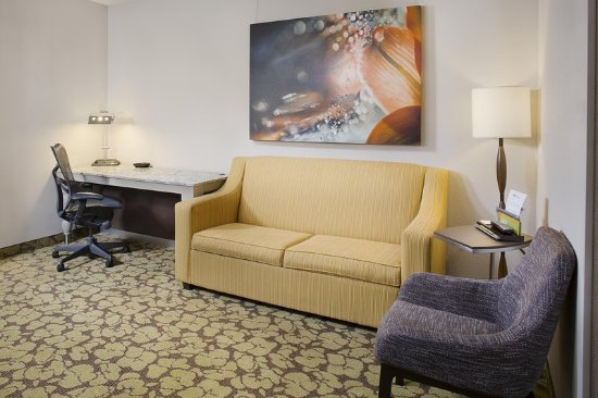 Hilton Garden Inn Wisconsin Dells: Suite