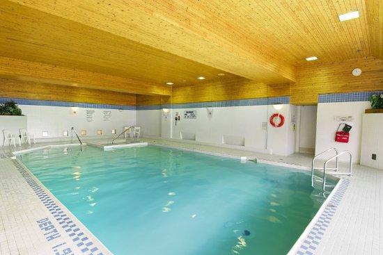 Les Suites Hotel Ottawa: Pool