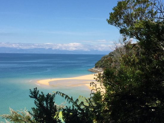 Motueka, New Zealand: Sandfly Bay