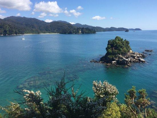 Motueka, New Zealand: A short hike after leaving Anchorage Bay