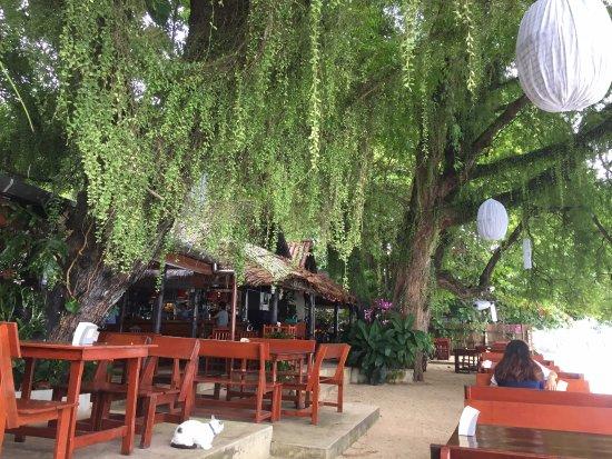 Nikitas Beach Restaurant: By the waters edge..