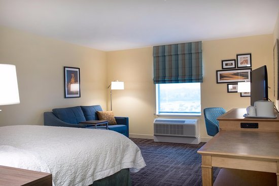 Big Rapids, MI: Guest room