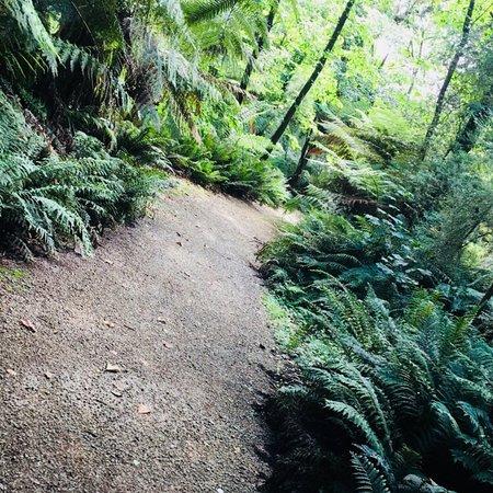 Emerald, Australië: photo8.jpg